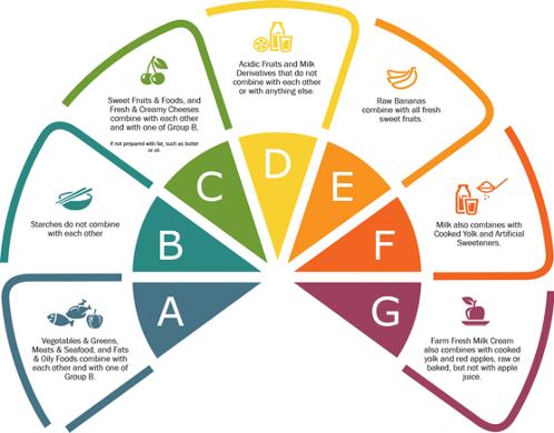 Groupes définis dans la Gracie Diet pour progresser en JJB